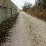 asphalt-or-concrete-driveway